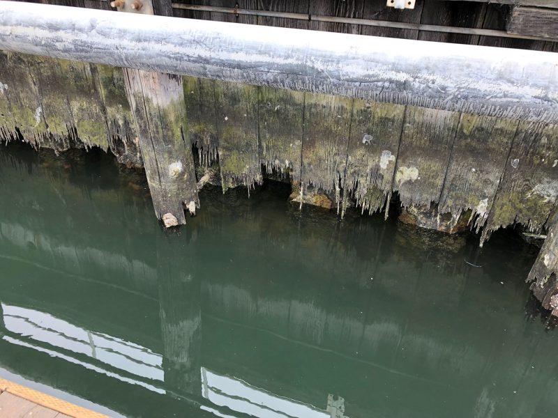 Failing waterfront seawall