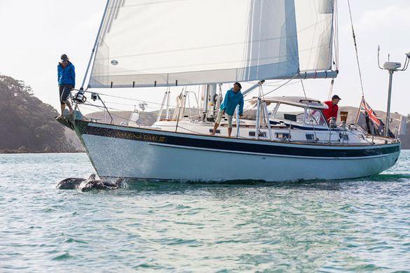 Pacific Sail & Power Boat Show Mahina Expeditions
