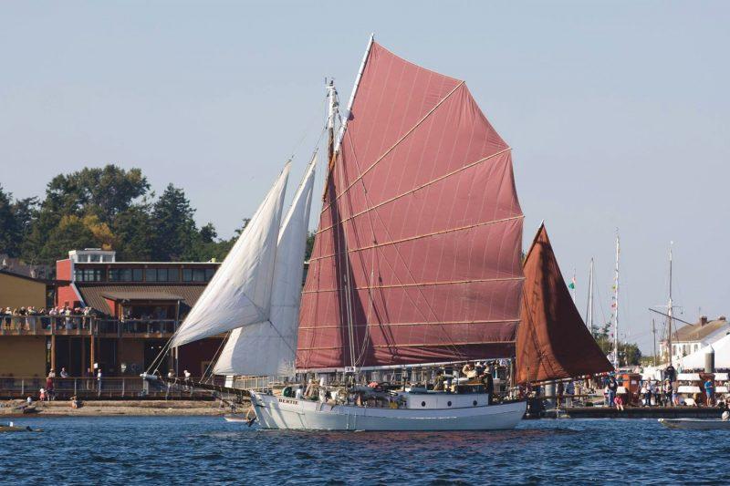 Bertie sailing