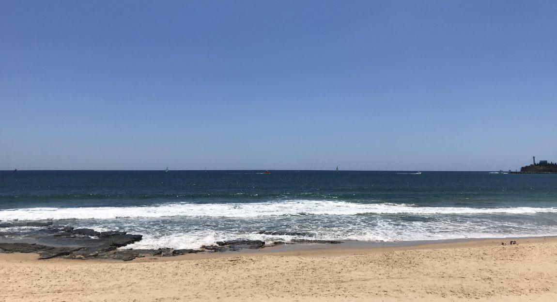 Clean Ocean, Healthy World.