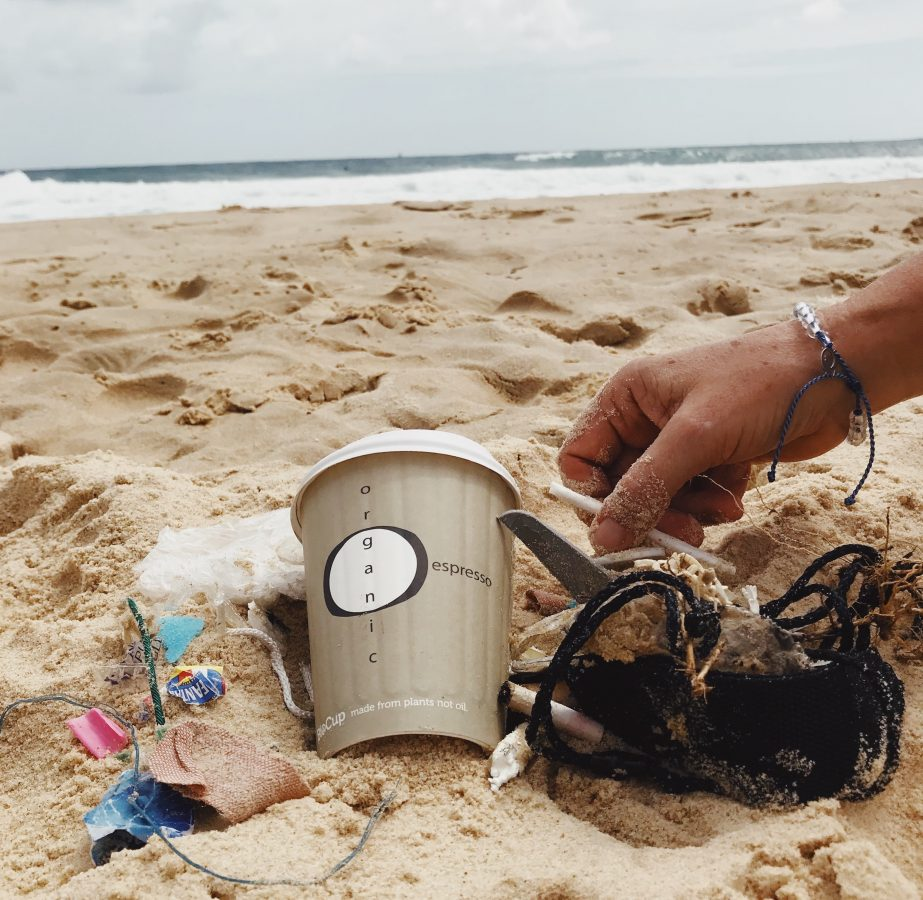 Ocean clean up starts on shore.