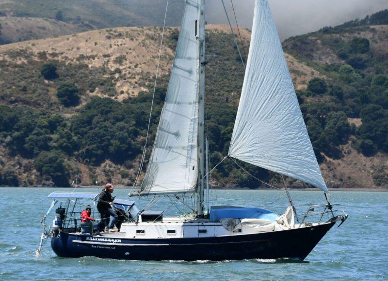 Sunny side San Francisco Bay sailing