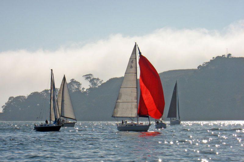 Sailboats at Angel Island