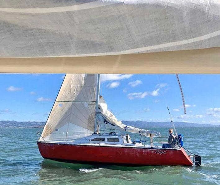 Fugu sailing