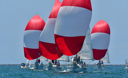 Catalina 37s with red and white spinnakers