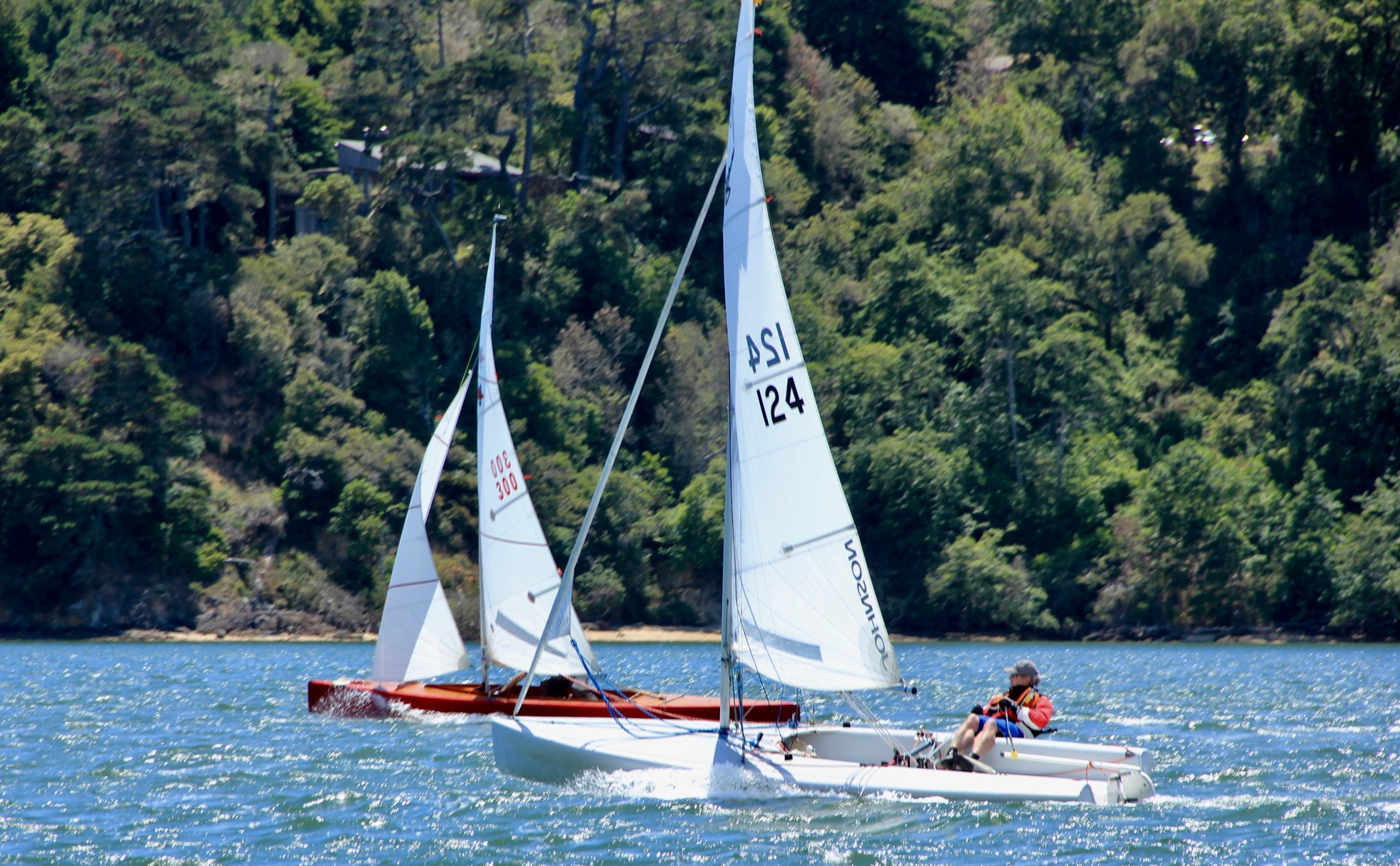 Open Class and solo sailing