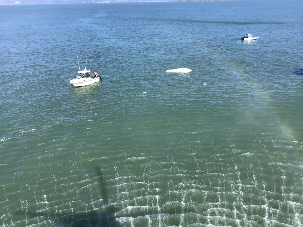 USCG rescues three from capsized vessel