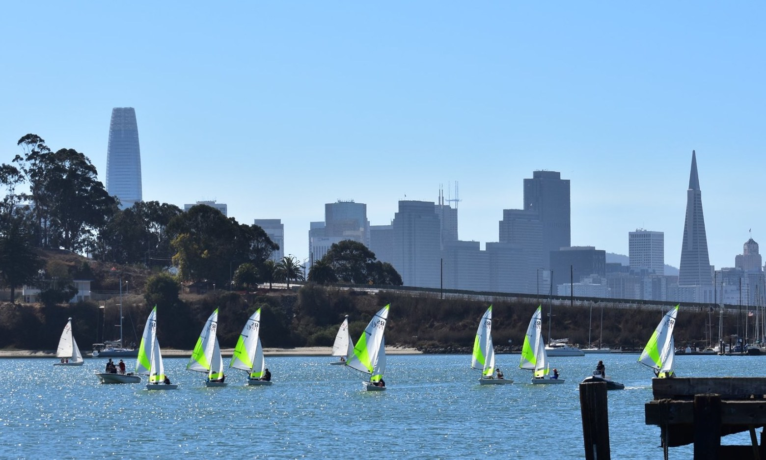 Small sailboats on the Bay
