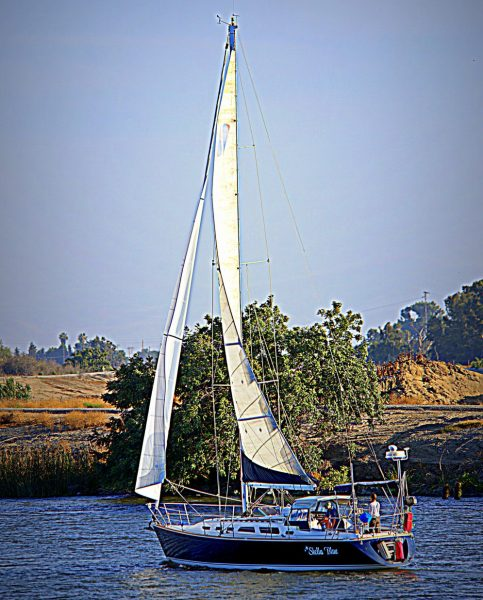 Stella Blue sailing on the Delta
