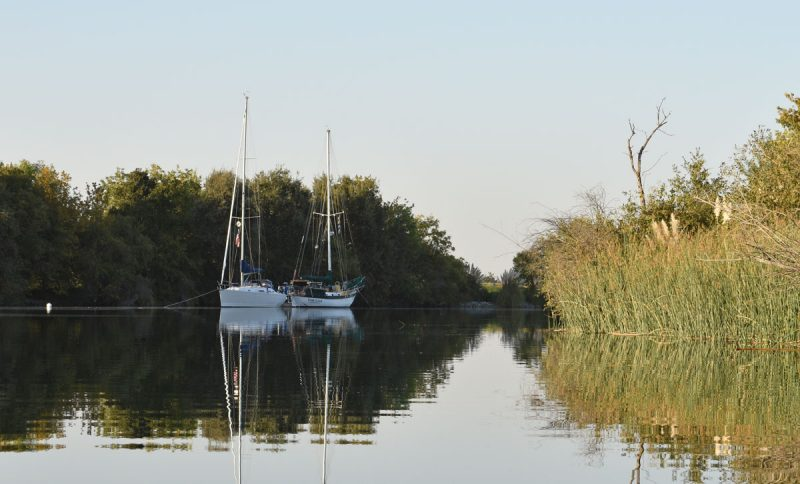 Two boats anchored near trees
