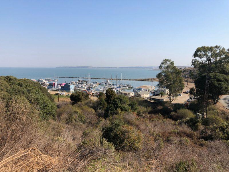 San Francisco Bay Area Marina