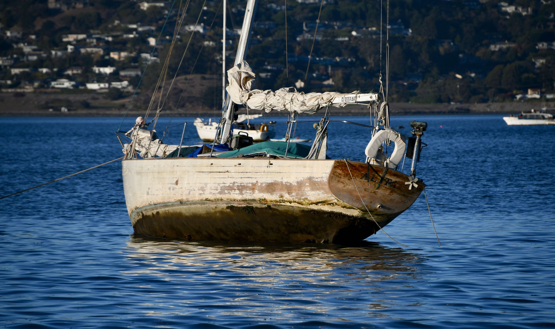 Richardson Bay 3