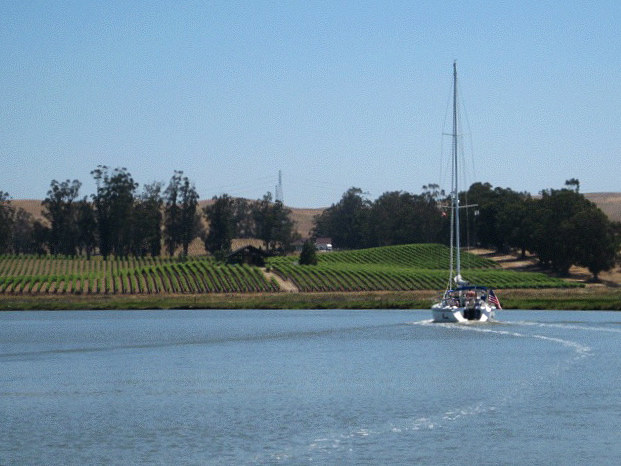 Cruising the Petaluma River