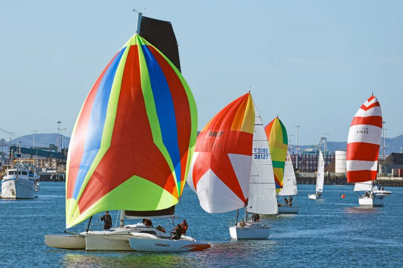 spinnakers on the Estuary