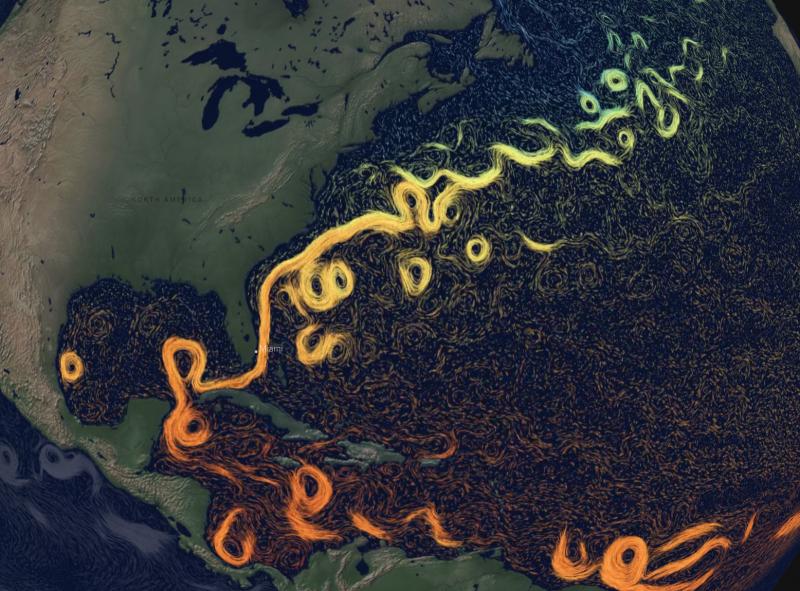 New York Times Gulf Stream
