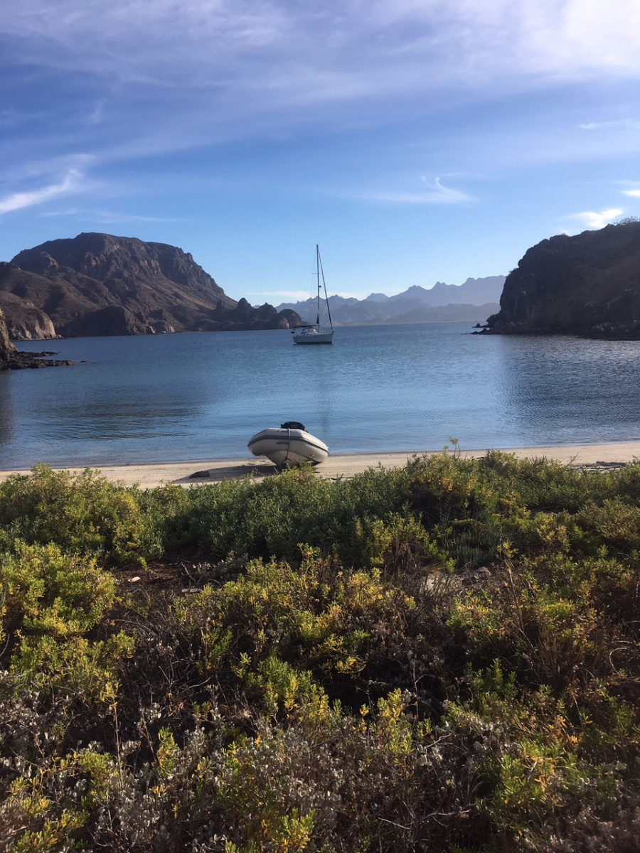 Freedom on Sea of Cortez