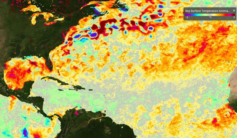 North Atlantic Sea Surface Temperatures