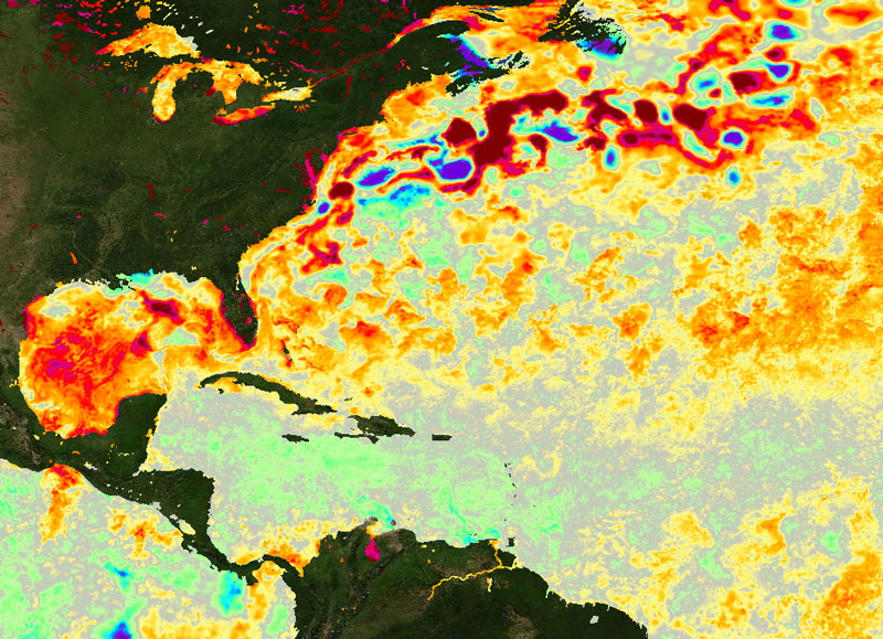 Graphic of sea surface temps