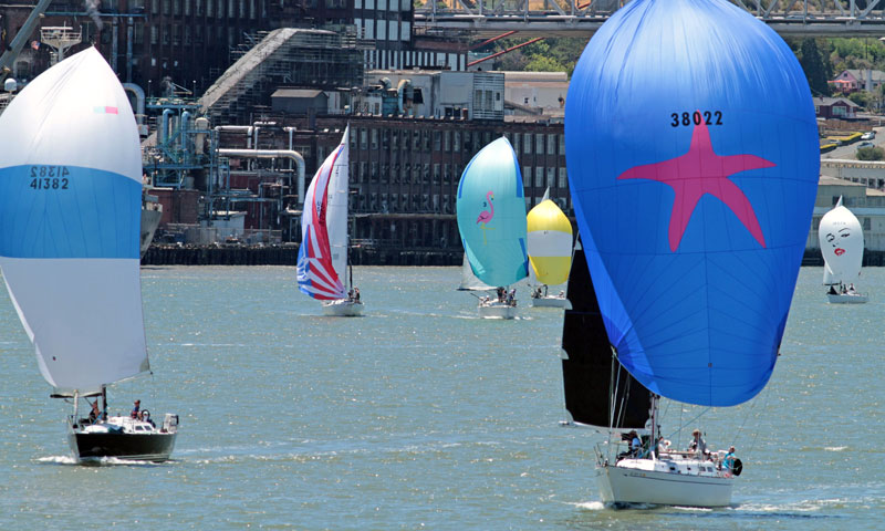 Fleet with spinnakers, C&H plant in the background