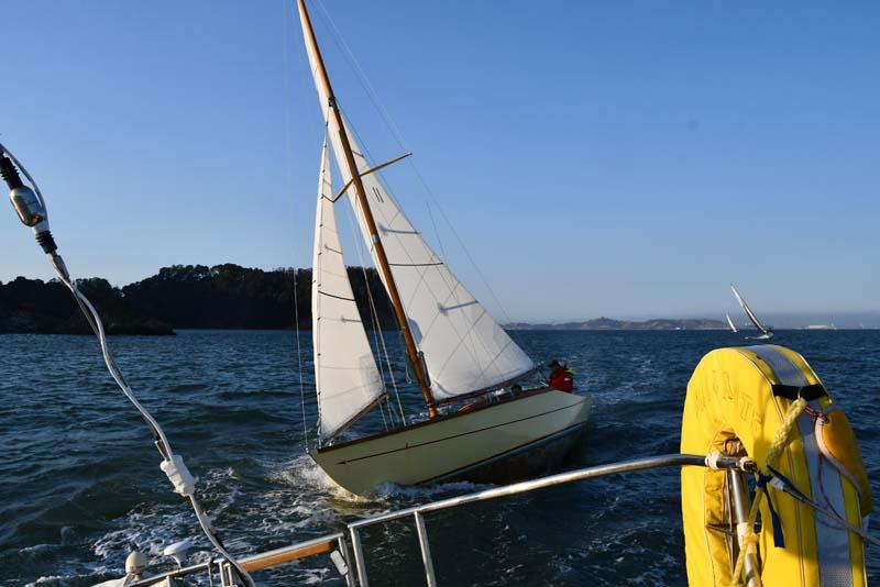 Bird Boat Oriole
