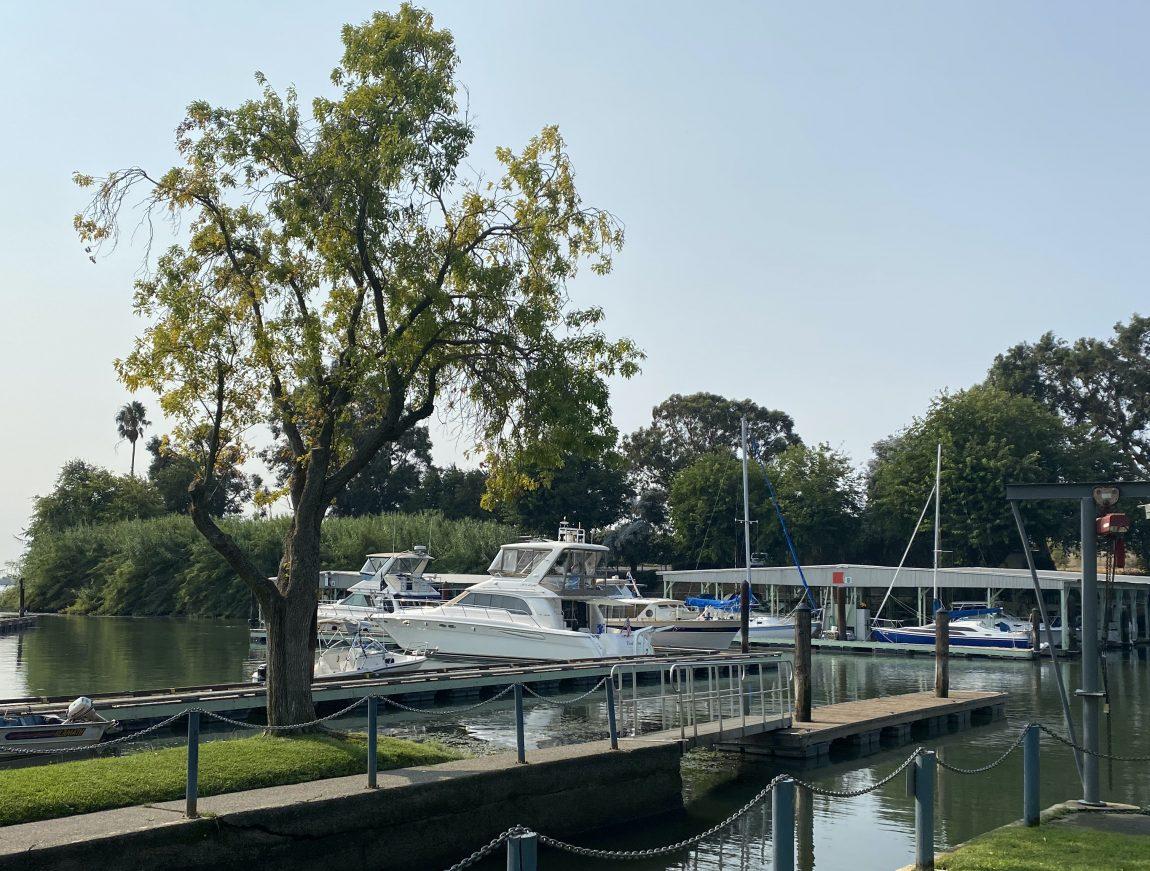 Delta Marina sailboats