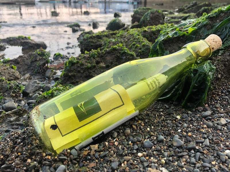 Latitude 38 Message in a Bottle